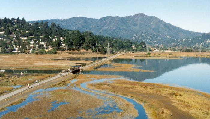 Image of Featured County of the Week: Marin