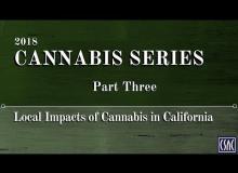 Cannabis Series — Part Three: Local Impacts of Cannabis in California