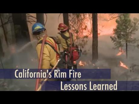 Rim Fire: Inferno to Recovery