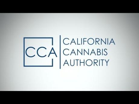 Learn About the California Cannabis Authority
