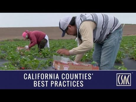 Monterey County Gives Farmworkers a Voice in their Health and Safety