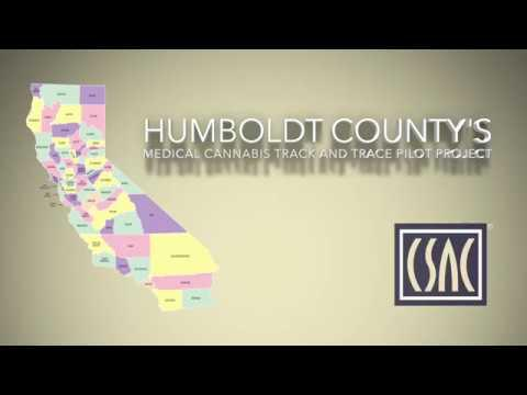 Humboldt County Shows the Benefits of an Effective Track and Trace Cannabis Program