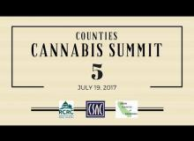 Part 5: Working with the Industry Breakout Session – Counties Cannabis Summit