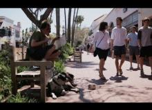 Best Practices: Santa Barbara County — Central Coast Collaborative on Homelessness (C3H)